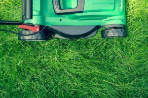 Parziale apertura discarica per utenze domestiche: verde e ingombranti